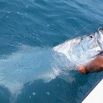 Sanibel Fishing Charter Information