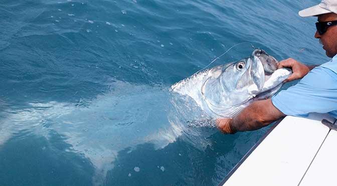 Sanibel Fishing Charter Information