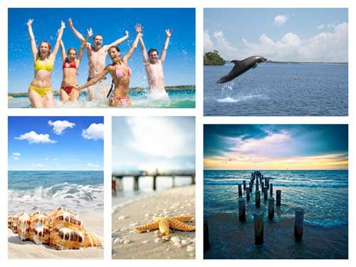 Eco Tours of Sanibel Island